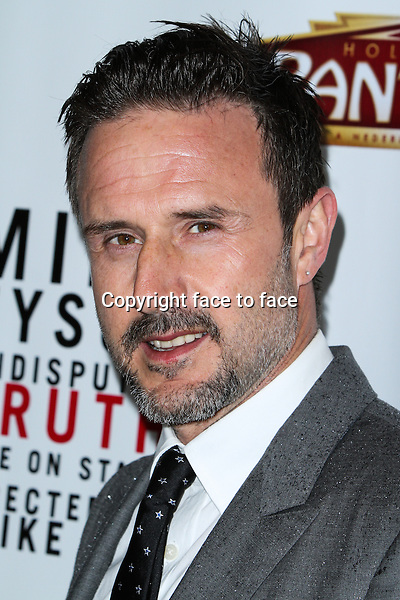 """David Arquette attending the """"Mike Tyson: Undisputed Truth"""" Los Angeles Opening Night held at The Pantages Theatre on March 8, 2013 in Hollywood, California. ..Credit: MediaPunch/face to face..- Germany, Austria, Switzerland, Eastern Europe, Australia, UK, USA, Taiwan, Singapore, China, Malaysia and Thailand rights only -"""