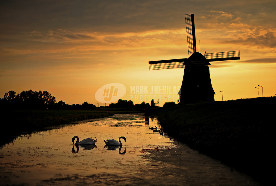 Amsterdam Holland Netherlands windmill water sunset dusk swan bird reflection country countryside europe silhouette canal