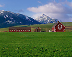 Wallowa County, OR   <br /> The OK Quarter Circle barn (built in 1933) in the Wallowa Valley with the Wallowa Mountains in the distance