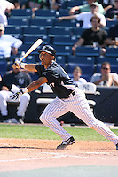 March 17th 2008:  Bernie Castro of the New York Yankees during a Spring Training game at Legends Field in Tampa, FL.  Photo by:  Mike Janes/Four Seam Images