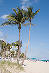 Coconut palms still grace the white sand beaches of Fort Lauderdale.