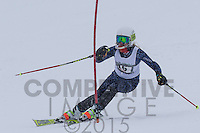 2015 Section 6 Alpine Ski Meet PM Run