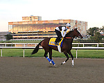 PA Derby/Cotillion Horses 2016