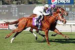 Cambina (IRE) wins the GIII La Habra Stakes over Quiet Oasis (IRE)