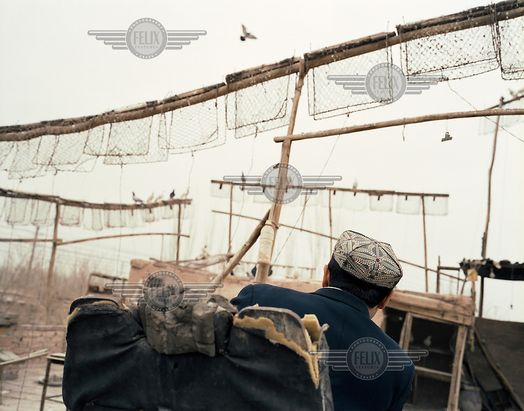 A man wearing a traditional Uighur (Uyghur) hat watches pigeons return to their traps. Known as 'pigeon-fancying', the tradition is long-standing within the Uighur (Uyghur) community. This practice, along with many other Uighur cultural expressions, has become endangered, as the Chinese government demolish much of the traditional Muslim housing, with flat roofs and courtyards, to make way for modern buildings..