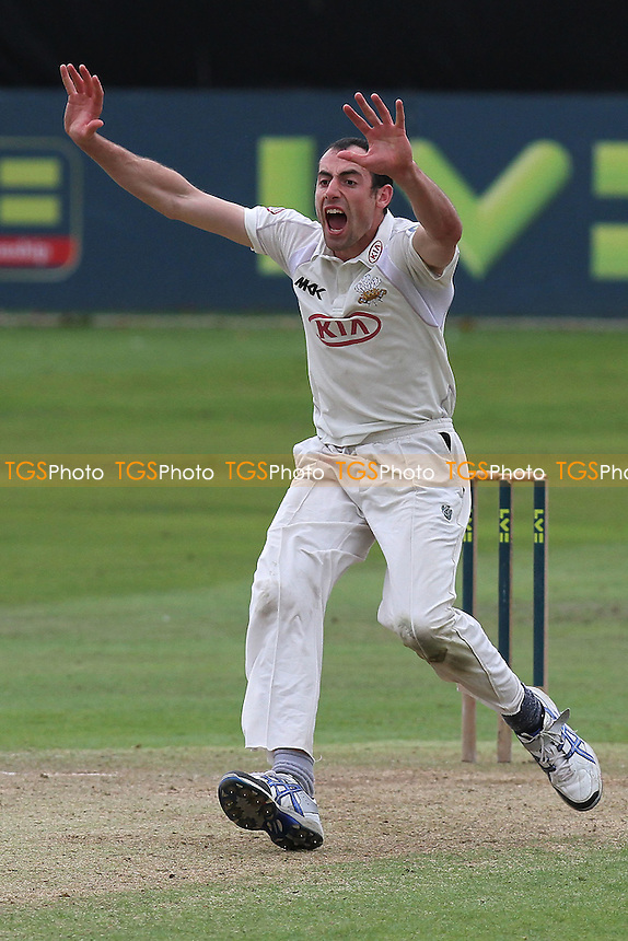 Tim Linley of Surrey appeals for another wicket - Essex CCC vs Surrey CCC - LV County Championship Division Two Cricket at The Ford County Ground, Chelmsford, Essex - 08/09/11 - MANDATORY CREDIT: Gavin Ellis/TGSPHOTO - Self billing applies where appropriate - 0845 094 6026 - contact@tgsphoto.co.uk - NO UNPAID USE