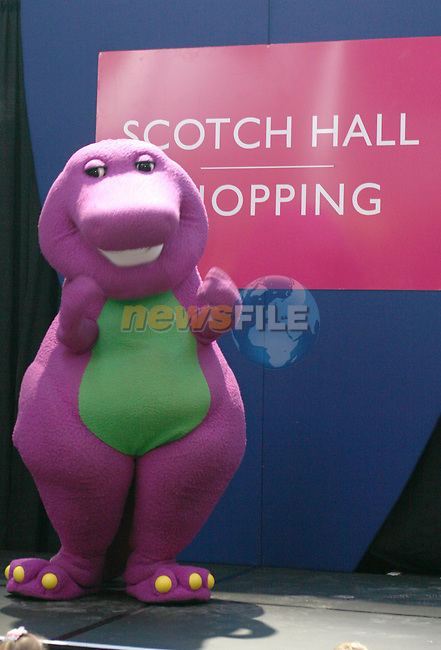 Barney in Scotch Hall Shopping Centre...Photo NEWSFILE/Jenny Matthews.(Photo credit should read Jenny Matthews/NEWSFILE)....This Picture has been sent you under the condtions enclosed by:.Newsfile Ltd..The Studio,.Millmount Abbey,.Drogheda,.Co Meath..Ireland..Tel: +353(0)41-9871240.Fax: +353(0)41-9871260.GSM: +353(0)86-2500958.email: pictures@newsfile.ie.www.newsfile.ie.FTP: 193.120.102.198.