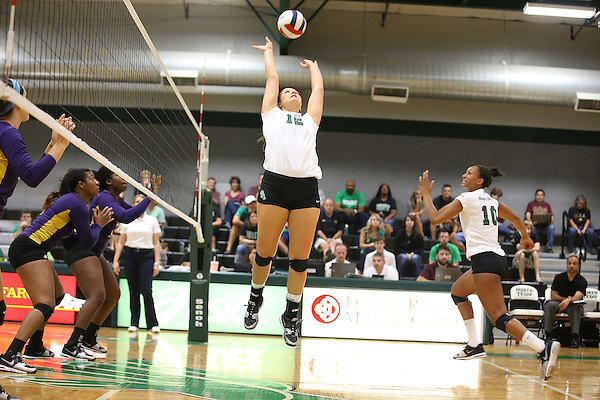 DENTON, TX - SEPTEMBER 6: Amy Henard #12 -North Texas Mean Green Volleyball Team vs Prairie View A&M at the Volleyball Athletic Complex in Denton on September 6, 2013 in Denton, Texas. Photo by Rick Yeatts
