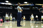 WINSTON-SALEM, NC - DECEMBER 31: Notre Dame's Brianna Turner. The Wake Forest University Demon Deacons hosted the Notre Dame University Fighting Irish on December 31, 2017 at Lawrence Joel Veterans Memorial Coliseum in Winston-Salem, NC in a Division I women's college basketball game. Notre Dame won the game 96-73.