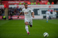 SWANSEA, WALES - APRIL 04: Wayne Routledge of Swansea City  in action during the Premier League match between Swansea City and Hull City at Liberty Stadium on April 04, 2015 in Swansea, Wales.  (photo by Athena Pictures)