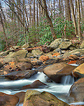 There always seems to be another beautiful, peaceful scene just downstream wherever in the Smokies you roam. Three exposure HDR