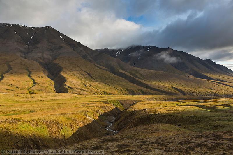 Refuge Valley, Denali National Park, Interior, Alaska.