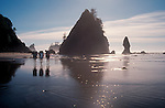 Olympic National Park, Hikers on the West Coast Trail pass sea stacks at Shi Shi beach, the wilderness coast of the Olympic Peninsula, Washington State, Pacific Northwest, USA.