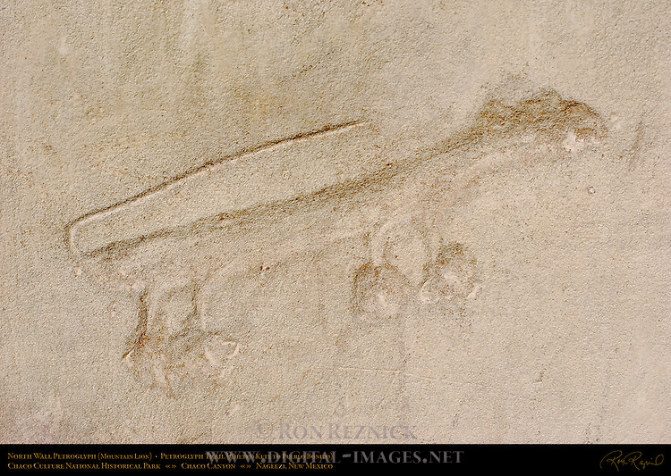 North Wall Mountain Lion Petroglyph, Petroglyph Trail Chetro Ketl to Pueblo Bonito, Chaco Culture National Historical Park, Chaco Canyon, Nageezi, New Mexico