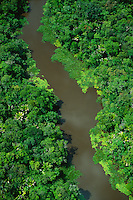 Aerial of river in floodplain rainforest in MarajÄ Island, Amazon estuary, Brazil..