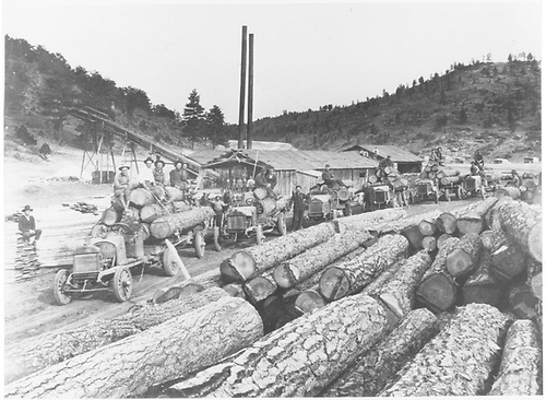 Lineup of six loaded logging trucks at Ponil Park sawmill landing area.  Drivers and crews posing for the photographer.<br /> Continental Tie &amp; Lumber Co.  Ponil Park, NM  1921