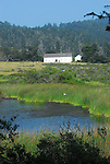 Pond and Visitor Center at Ano Nuevo State Park