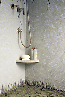 Willow and grass shower shown in Celeste, Verde Luna, Travertine Noce, Topax Onyx, and Chartreuse.