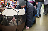 NWA Democrat-Gazette/CHARLIE KAIJO Michael Boys of Rogers pets a cat during a cat adoption event, Sunday, February 10, 2019 at Pet Supplies Plus in Rogers. <br />