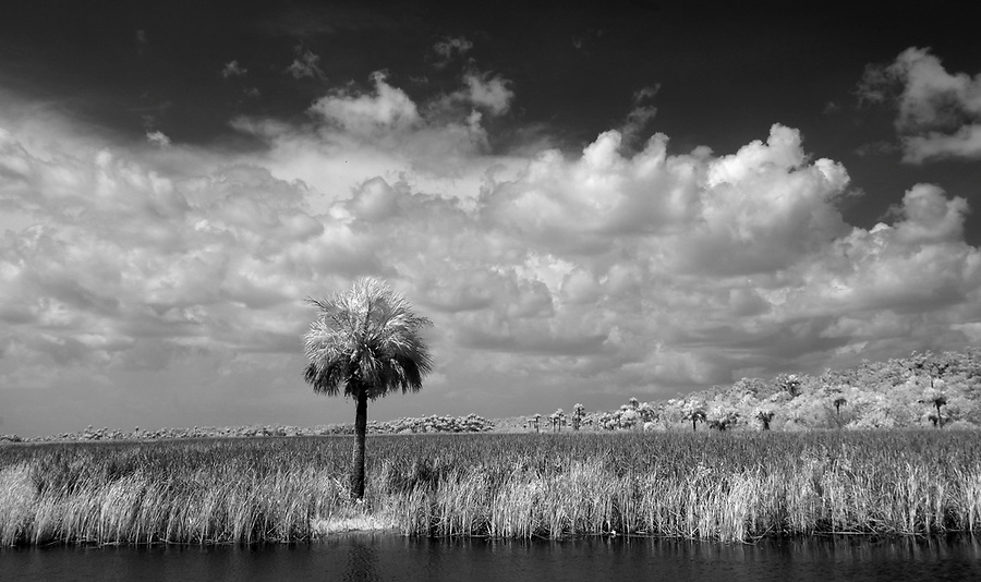 in Florida's Everglades National Park out of Chokoloskee Island and the 10,000 Islands National Wildlife Refuge. Photo/Andrew Shurtleff