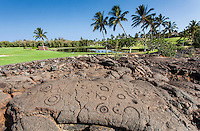 Petroglyphs or ki'i pohaku along the King's Course golf course at the Waikoloa Petroglyph Field (a.k.a. 'Anaeho'omalu Petroglyph Field), Big Island.