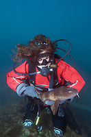 Diver holding a juvenile Blind Shark, Brachaelurus waddi. Green Island, South West Rocks, New South Wales, Australia.