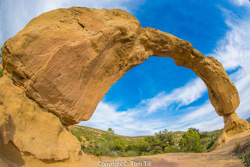 Anasazi Arch, BLM lands near Farmington, New Mexico, Colorado Plateau, Animas River Valley