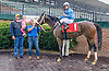 Jade With Envy winning at Delaware Park on 9/28/16