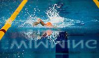 swimming<br /> 400 freestyle women<br /> FINA Airweave Swimming World Cup 2015<br /> Dubai U.A.E  2015  Nov.6 th - 7th3 rd<br /> Day2 - Nov. 7 th heats<br /> Photo G. Scala/Deepbluemedia