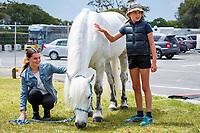 The Breeding Village. 2019 Equitana Auckland. ASB Showgrounds. Auckland. New Zealand. Sunday 24 November. Copyright Photo: Libby Law Photography