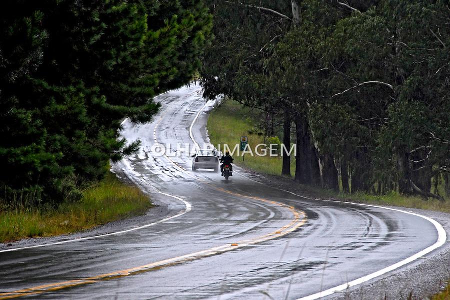 Estrada RS235 com chuva. São Francisco De Paula. Rio Grande do Sul. 2008. Foto de Juca Martins.