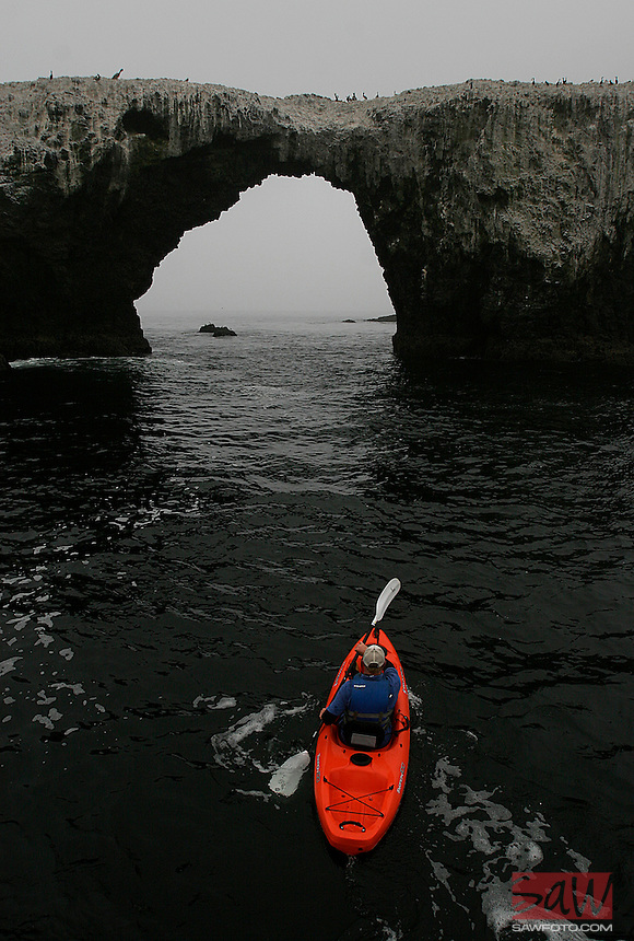 ANACAPA,CA - May 05, 2008: A kayaker navigates towards Arch Rock on the east end of Anacapa Island, May 5, 2008. The forty foot tall rock formation is the symbol of the Channel Islands National Park. Channel Islands National Park, off the Southern California coast includes five islands--Santa Cruz, Santa Rosa, San Miguel, Santa Barbara, and Anacapa.
