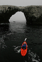 ANACAPA,CA - May 05, 2008: A kayaker navigates towards Arch Rock on the east end of Anacapa Island, May 5, 2008. The forty foot tall rock formation is the symbol of the Channel Islands National Park. Channel Islands National Park, off the Southern California coast includes five islands--Santa Cruz, Santa Rosa, San Miguel, Santa Barbara, and Anacapa.