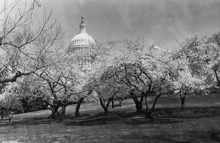 Exterior of Capitol Hill, April 1988. (Photo by CQ Roll Call via Getty Images)