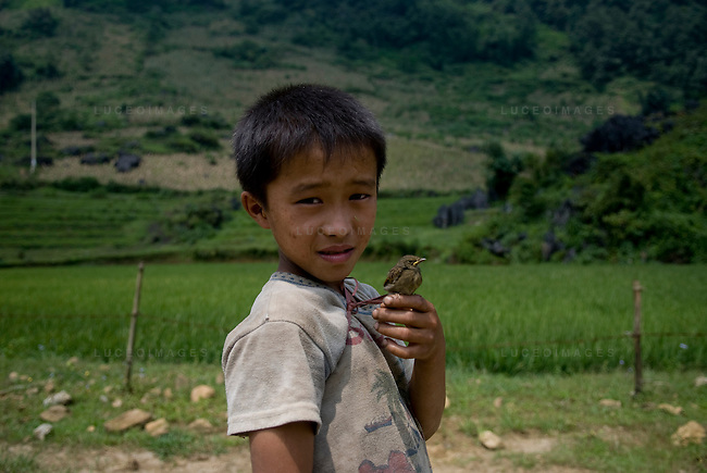 A Vietnamese boy with his bird in a minority village outside of Sapa, Vietnam.