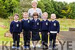 Templeglantine N.S.<br /> Liam Dalton, Calum Kelliher, Emily McCarthy, &Oacute;is&iacute;n O' Connor, Odhr&aacute;n O' Regan and teacher Mrs. Mary Fitzgerald.