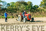 Darragh Brosnan and Michael Brosnan, Castleisland at the Abbeydorney Ploughing Match  at Corridan's Farm, Ballysheen on Sunday
