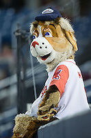 """Salem Red Sox mascot """"Mugsy"""" watches the action from the top of the home dugout during the game against the Winston-Salem Dash at LewisGale Field at Salem Memorial Ballpark on May 13, 2015 in Salem, Virginia.  The Red Sox defeated the Dash 8-2.  (Brian Westerholt/Four Seam Images)"""