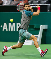 11-02-14, Netherlands,Rotterdam,Ahoy, ABNAMROWTT,Grigor Dimitrov(BUL)<br /> Photo:Tennisimages/Henk Koster