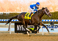 OZONE PARK, NEW YORK - FEB 03: Avery Island, #4, ridden by Joe Bravo, wins the Withers Stakes for 3 year olds, Aqueduct Racetrack, on February 3, 2018 in Ozone Park, New York. ( Photo by Sue Kawczynski/Eclipse Sportswire/Getty Images)