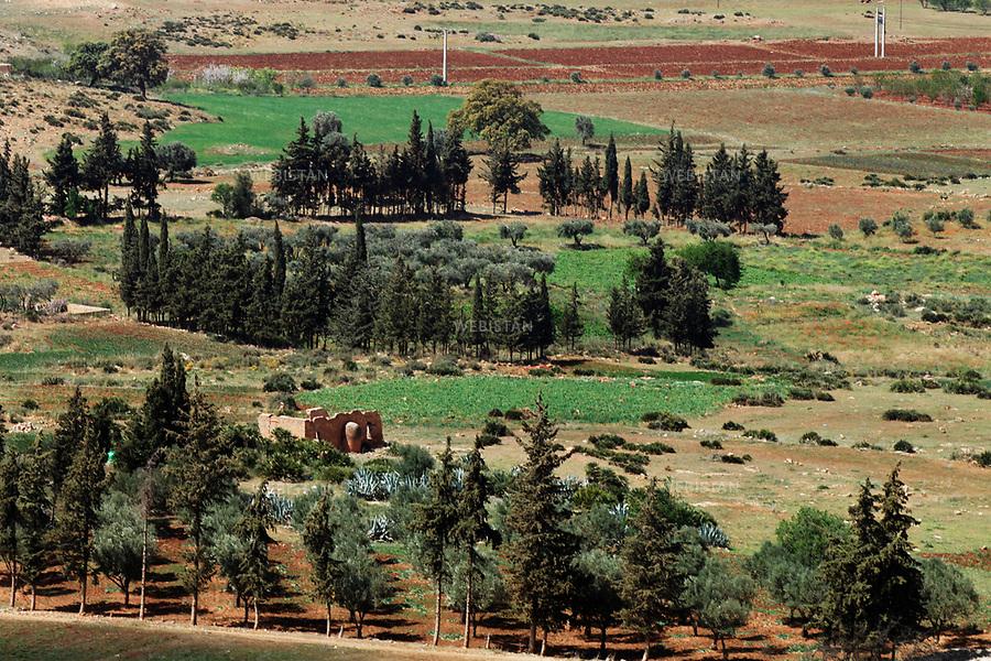 Algerie. Region de Tlemcen.12 Avril 2011 .Vue sur des champs cultives.<br /> <br /> <br /> Tlemcen region, Algeria. April 12th 2011<br /> View of cultivated fields.