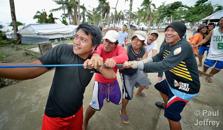Men pull on a rope to guide a coconut tree that is being felled on Jinamoc Island, part of the municipality of Basey in the Philippines province of Samar that was hit hard by Typhoon Haiyan in November 2013. The storm was known locally as Yolanda. The felled tree will be cut into lumber for the construction of temporary houses. The ACT Alliance has been providing a variety of forms of assistance to survivors here, including a cash for work program that pays local residents to saw up downed and damaged coconut trees to provide lumber for shelter construction. Coordinated by the National Council of Churches in the Philippines, the recovery program includes shelter construction, livelihood generation, reforestation, and assistance to women's and farmers' groups. Finn Church Aid will assist with school construction, and Norwegian Church Aid will help residents build permanent comfort rooms (toilets).