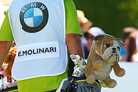 Edoardo Molinari's lucky mascot at the 1st tee  during the BMW PGA Golf Championship at Wentworth Golf Course, Wentworth Drive, Virginia Water, England on 26 May 2017. Photo by Steve McCarthy/PRiME Media Images.