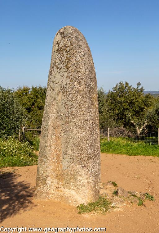 Neolithic standing stone 4 metres high called the Menir dos Almendres, near Evora, Alentejo, Portugal, Southern Europe