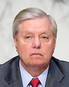 "United States Senator Lindsey Graham (Republican of South Carolina) listens to testimony before the US Senate Committee on the Judiciary Subcommittee on Crime and Terrorism hearing titled ""Russian Interference in the 2016 United States Election"" on Capitol Hill in Washington, DC on Monday, May 8, 2017.<br /> Credit: Ron Sachs / CNP<br /> (RESTRICTION: NO New York or New Jersey Newspapers or newspapers within a 75 mile radius of New York City)"