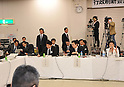 Japanese Politics - Naoto Kan