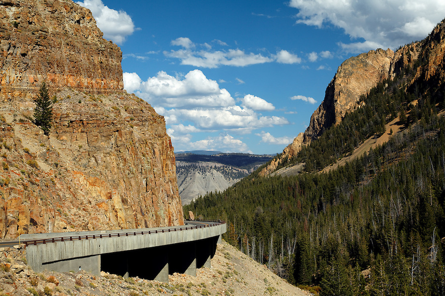 Yellowstone's Grand Loop Road passes through Golden Gate, Yellowstone National Park, Wyoming, USA