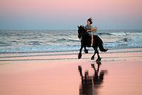 Young woman bareback riding powerful Friesian stallion on beach at dusk