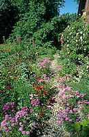 Naturgarten mit Kiesweg