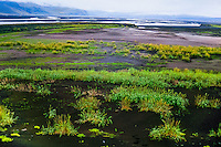 Iceland. Skeiðarársandur is the largest sandur in the world.